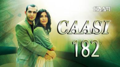 Photo of Caasi Part 182 Musalsal Turki Af Soomaali