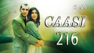 Photo of Caasi Part 216 Musalsal Turki Af Soomaali