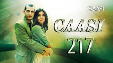 Photo of Caasi Part 217 Musalsal Turki Af Soomaali