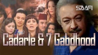 Photo of Cadarle & 7 Gabdhood -Nuur Shariif