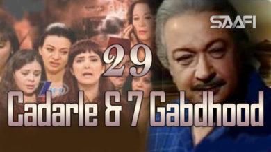 Photo of Cadarle & 7 Gabdhood Part 29 – Nuur Shariif