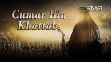 Photo of Cumar Bin KHattab Musalsal Diini Ah.