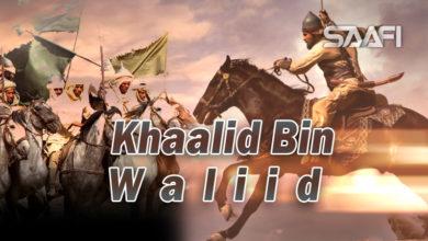 Photo of Khaalid Bin Waliid – Xayeesiin