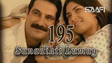 Photo of Sanadihii Lumay Part 195