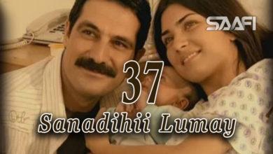 Photo of Sanadihii Lumay Part 37