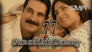 Photo of Sanadihii Lumay Part 77