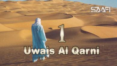 Photo of Uwais Al Qarni Part 1