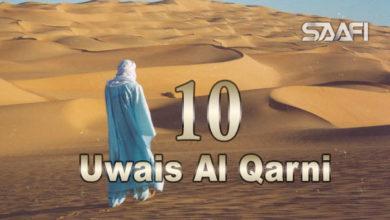 Photo of Uwais Al Qarni Part 10