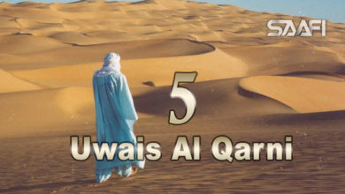 Photo of Uwais Al Qarni Part 5