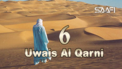 Photo of Uwais Al Qarni Part 6