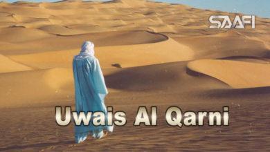 Photo of Uwais Al Qarni – Xayeesiin