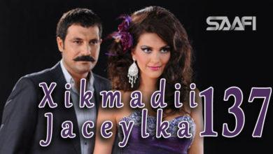 Photo of Xikmadii Jaceylka part 137
