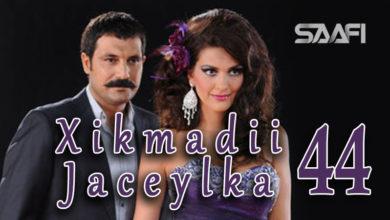 Photo of Xikmadii Jaceylka part 44