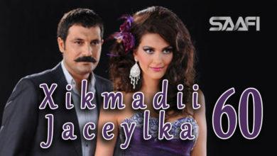 Photo of Xikmadii Jaceylka part 60
