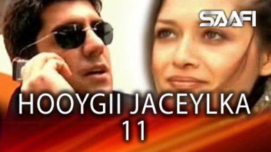 Photo of HOYGII JACEYLKA 11