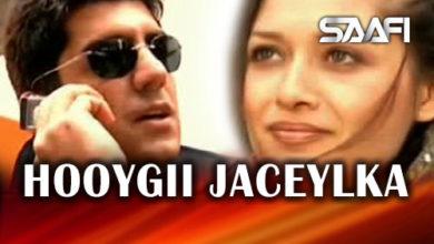 Photo of Hooygii Jaceylka – Xayeesiin