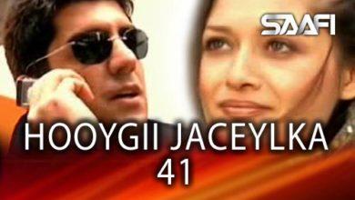 Photo of HOOYGII JACEYLKA 41