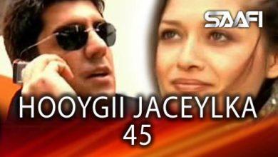 Photo of HOOYGII JACEYLKA 45