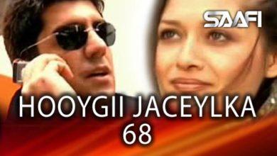 Photo of HOOYGII JACEYLKA 68