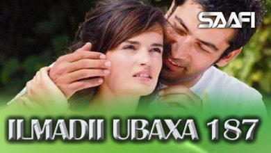 Photo of ILMADII UBAXA 187