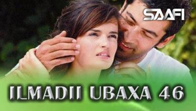 Photo of ILMADII UBAXA 46