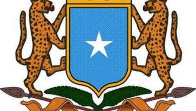 Photo of Somalia Condemns Egypt Terror Attack