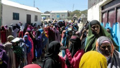 Photo of United Arab Emirates plays destructive role in Somalia