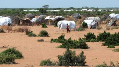 Photo of UN creates role to help refocus aid for Somali refugees