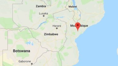 13 Somalis found dead in a bush in Mozambique Bodies of 13 Somalis