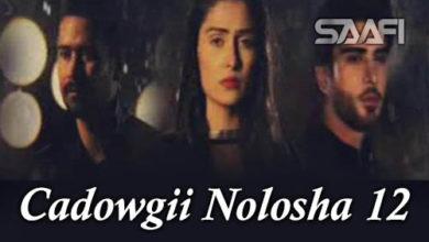 Cadowgii Nolosha Part 12