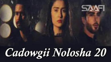 Cadowgii Nolosha Part 20