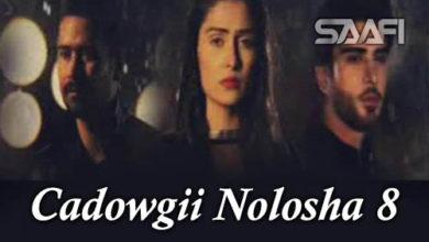 Cadowgii Nolosha Part 8
