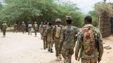 Photo of Several Al-Shabaab militants killed in Somalia military operation