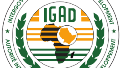 Photo of East African Bloc IGAD Trains Somalis On Counter Radicalization