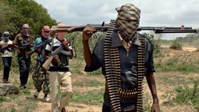 Photo of 54 Students Abandoned University To Join Terror Groups