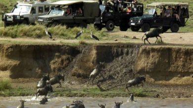 Photo of Kenya: America scraps travel advisory against Kenya