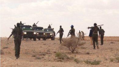 Photo of Somalia: Intense clan clashes in Sanaag region kill 17 people