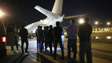 Photo of Expulsion of Somalis on botched deportation flight halted