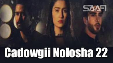 Cadowgii Nolosha Part 22