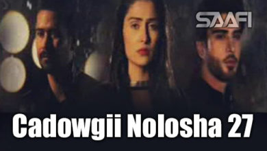 Photo of Cadowgii Nolosha Part 27