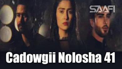 Photo of Cadowgii Nolosha Part 41 Musalsal Hindi Af Soomaali