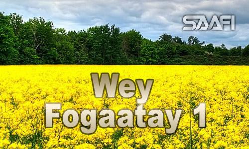 Wey Fogaatay Part 1
