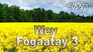 Photo of Wey Fogaatay Part 3