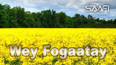 Photo of Wey Fogaatay Horudhaca
