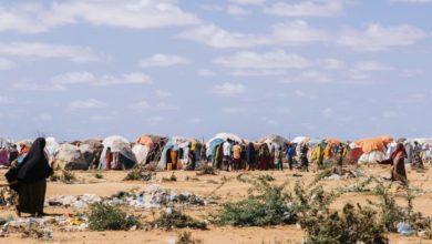 Photo of Failed Rains Leave Somalis Fearful