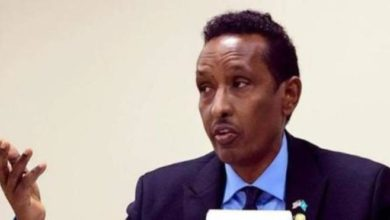 Photo of Somali minister hails UAE developmental support
