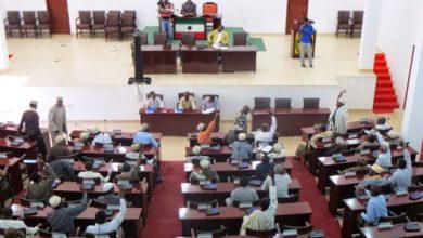 Somaliland elders approve 'historic' law criminalising rape