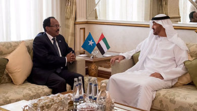 Gulf crisis spills into Somalia as tensions with UAE soar