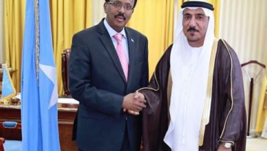 WATCH: What's triggering tension between Somalia and the UAE?