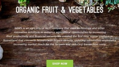 Meet SAMS, Somalia's first marketplace for farm goods